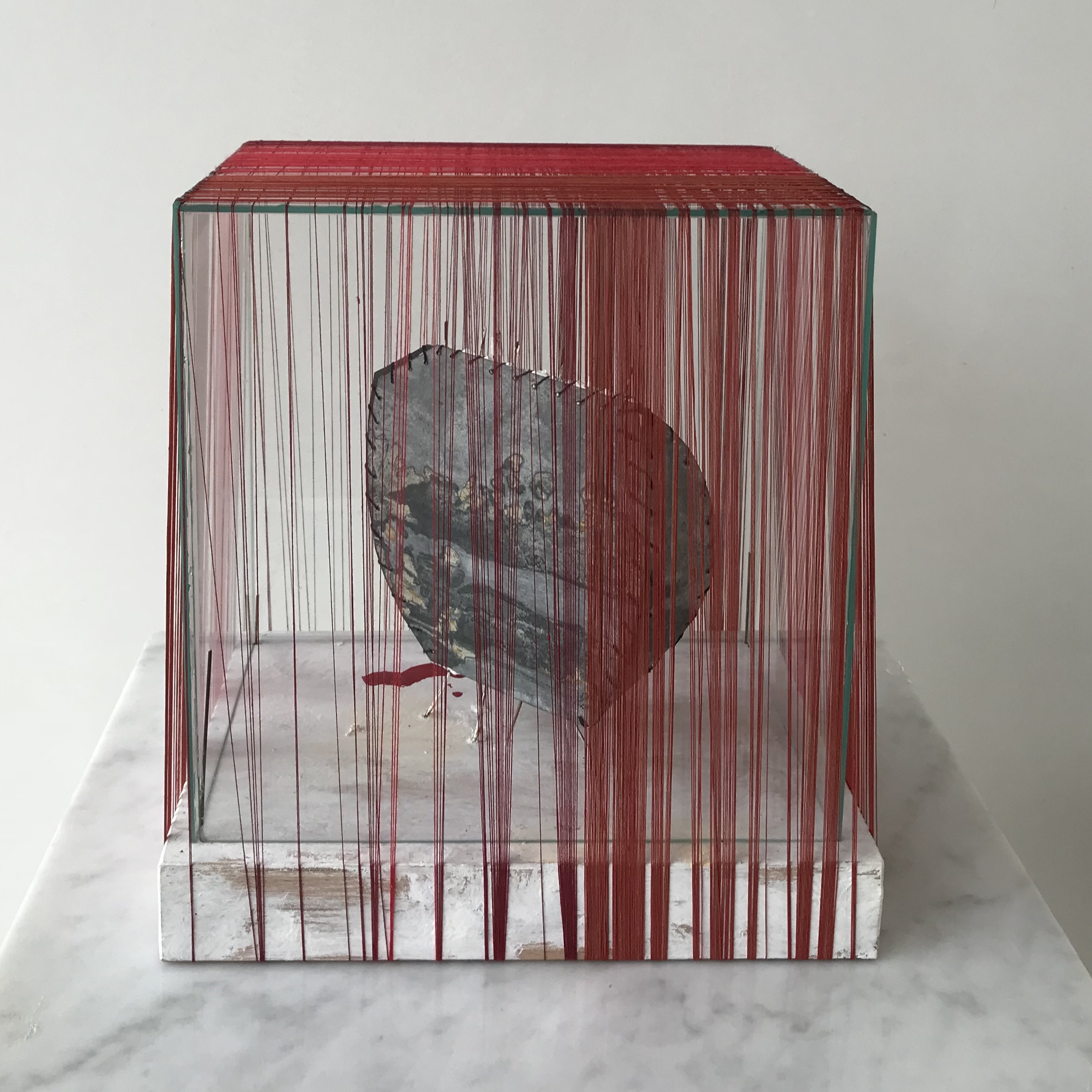 Zinc Root in glass box